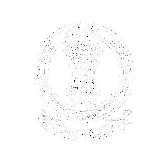 Punjab Patwari