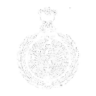 Haryana Patwari